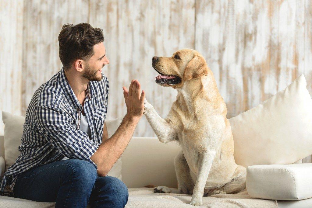 man wit his pet dog
