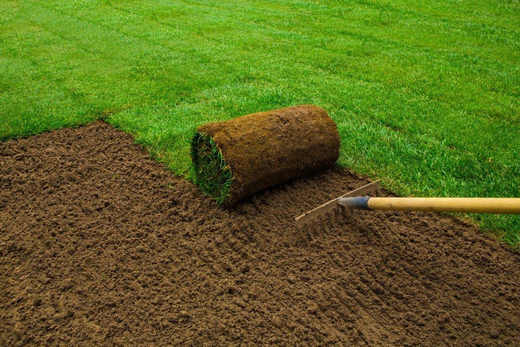 landscaping in garden